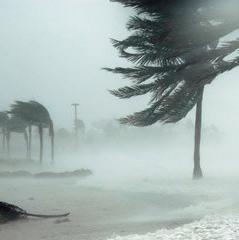 Storm Surge_1